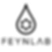 Feynlab logo.png