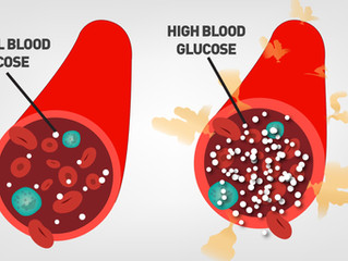 CSDP GOLD는 왜 당뇨 합병증에 좋을까요?