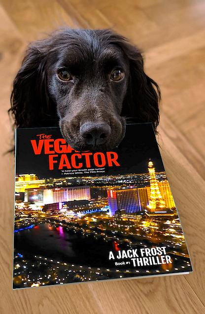 dog-thevegasfactor.png