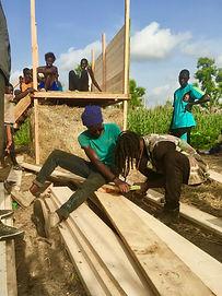 Building the tree bog