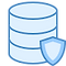 icons8-data-protection-80.png