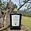 Thumbnail: 🇬🇧🇺🇦 2020 ELLEIVÆ Biologico EVOO. 6 (six) bottles (0.5l). IGP Toscano