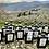 Thumbnail: 🌎🌍 2020 ELLEIVÆ Biologico EVOO. 16 (sixteen) bottles. IGP Toscano.