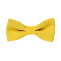 Yellow%20Bow%20Tie_edited.png