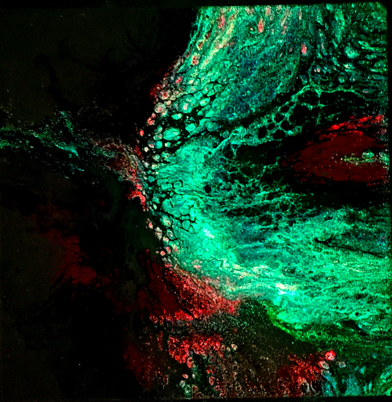 3D Glow in the Dark Fluid Pour Dark