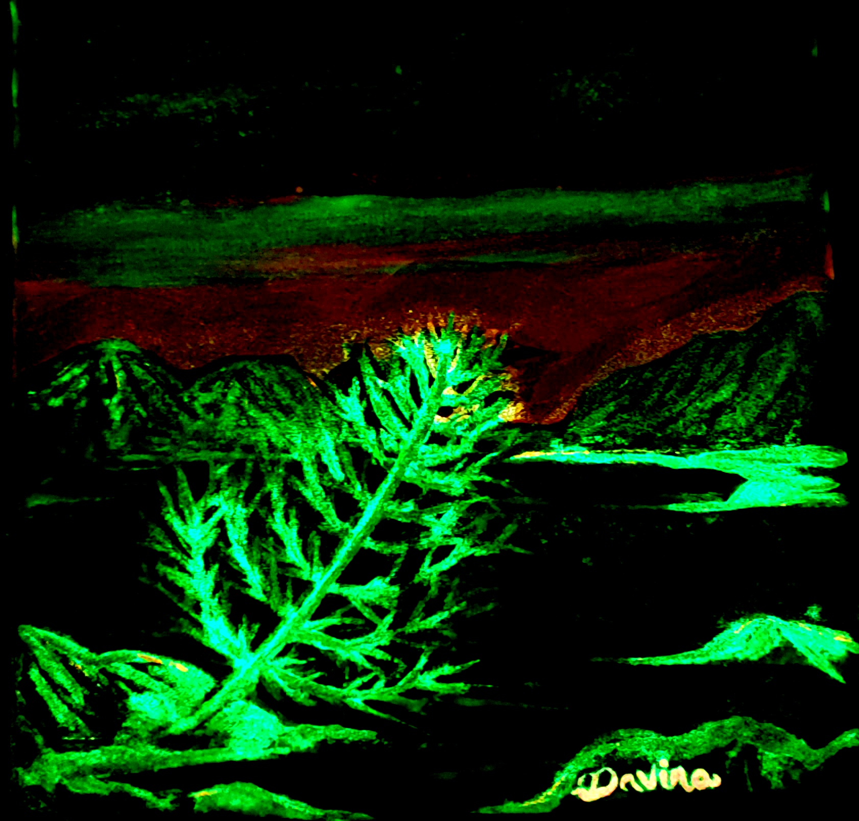 Glow in the Dark Lake Tahoe Dark