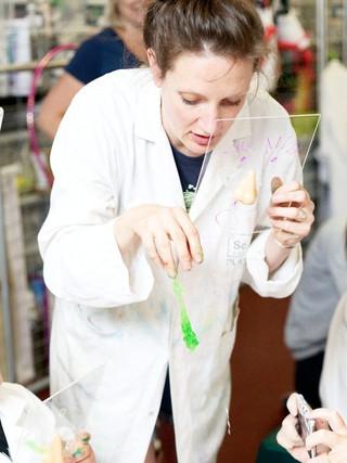 Dr. Loz 2