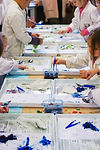 SciencePlay Kids-splats-photo.JPG