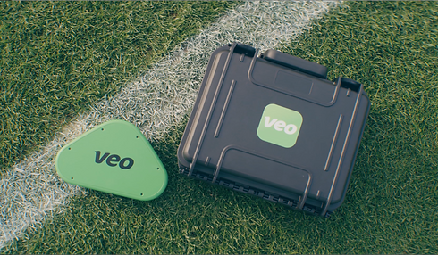 Veo-on-grass.png