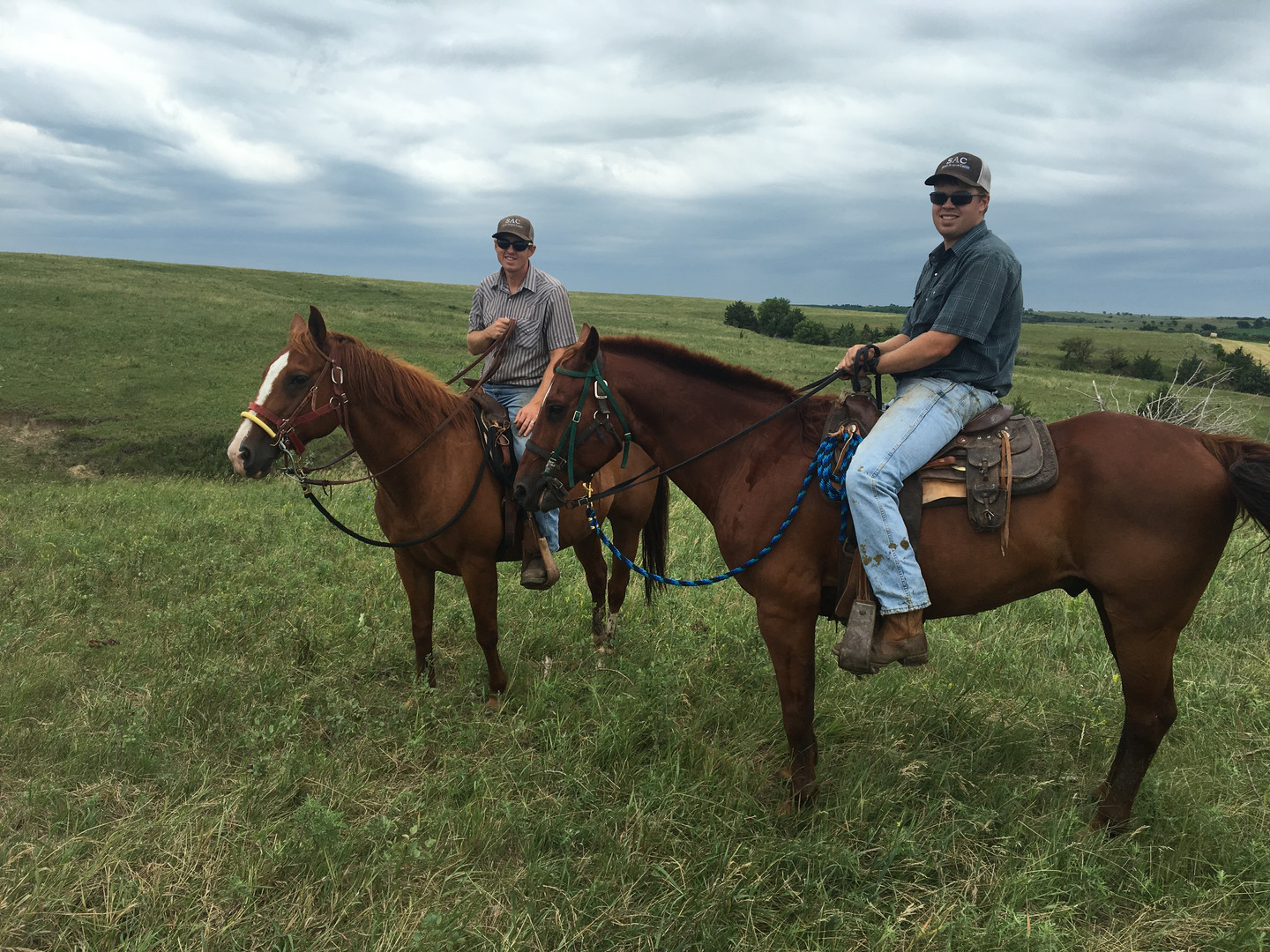 AJ on June and Sam on Eddy driving cattle