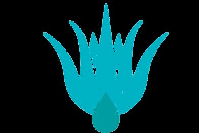 PNG-RENOVATIS-BLANCO-70.png