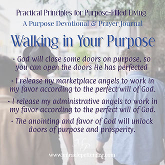 Walking In Your Purpose | Practical Christian Principles