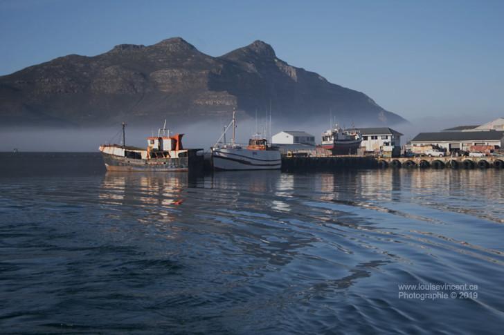 La brume se lève sur le port