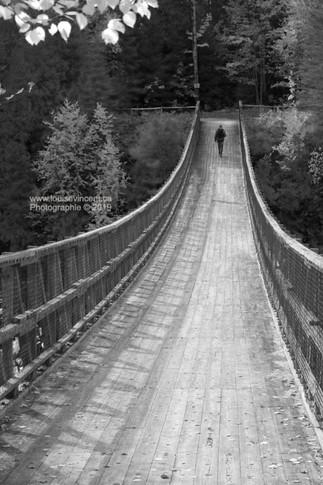 Pont suspendu (St-Narcisse)
