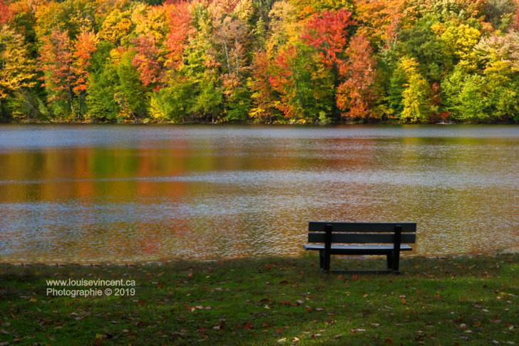 Méditation d'automne