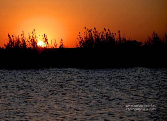 Coucher de soleil (rivière Chobe)