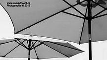 Parasols en noir et blanc