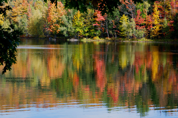 Miroir d'automne