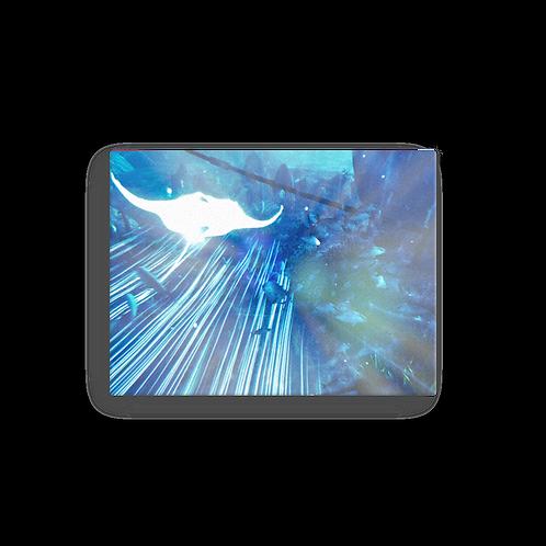 Astral Rider Canvas