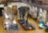 Rutgers Geology Museum.jpg
