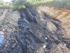 Coal deposits in Virginia