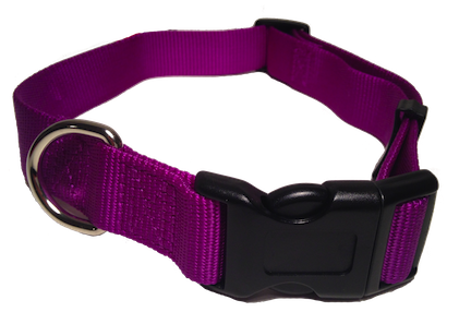 Nylon Dog Collar Plastic Clip - Purple