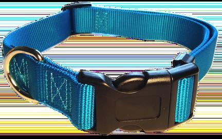 Nylon Dog Collar Plastic Clip - Turquoise