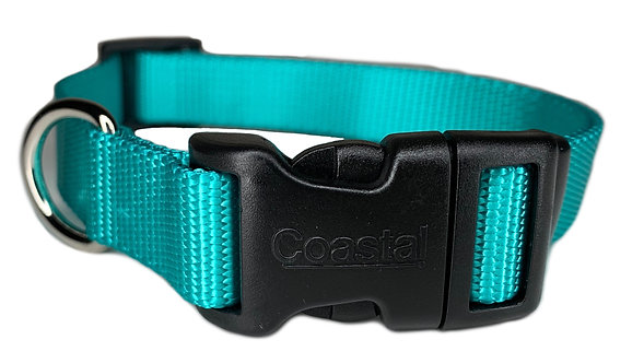 Nylon Dog Collar Plastic Clip -Mint Green