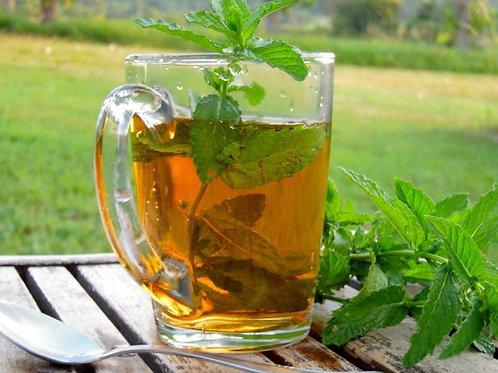 Thé vert à la menthe fraîche