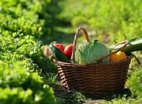 Bienfaits des légumes