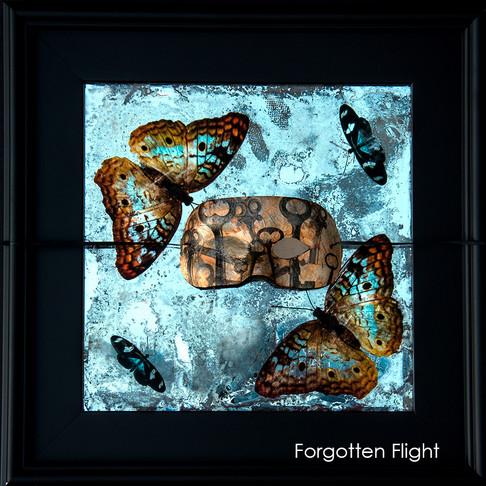Forgotten Flight #2