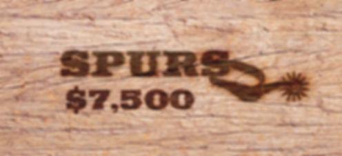 02_Spurs_THRU-Project_SPONSORSHIP-Levels