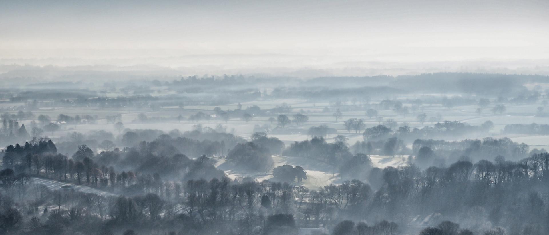 Mist at Box Hill (copyright: Philip J. Richter)