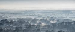 Mist at Box Hill