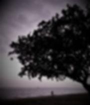 1)Hope Beckons - copyright Lesley Goonti