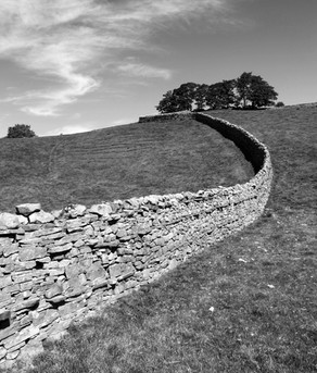 Yorkshire Stone Wall (copyright: Philip J. Richter)