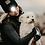 Thumbnail: Hundelufter HUE | DogCoach