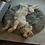Thumbnail: Fluffy hundeseng