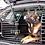 Thumbnail: TEST af Hundegitter til bilen