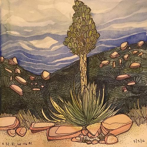 Sketchbook Print / Yucca, California