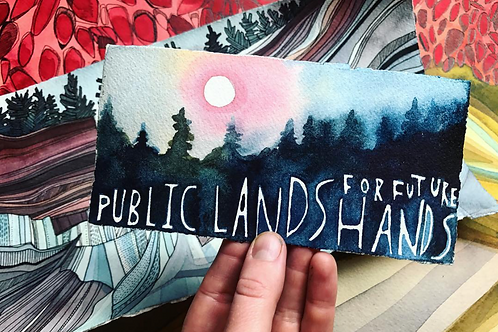 Public Lands Original Postcard