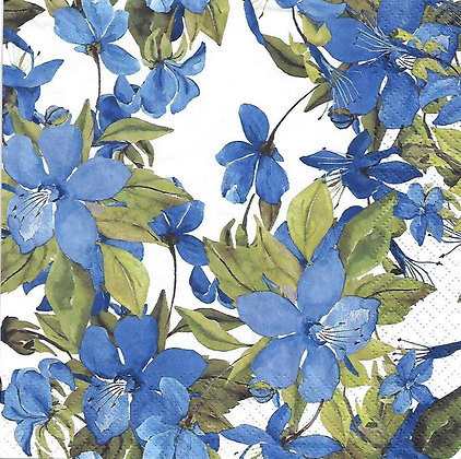 Flowering Clematis blue Referencia 1021