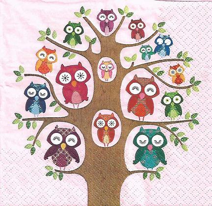 Owl family tree pink