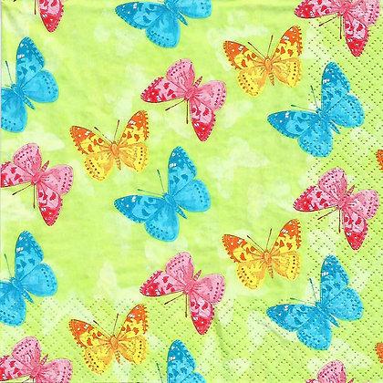 Papillon green