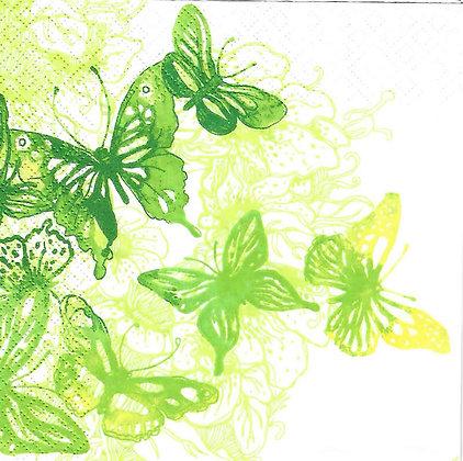 Amazing butterflies green
