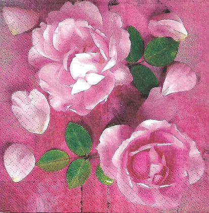 Hot Pink Roses Referencia 1016