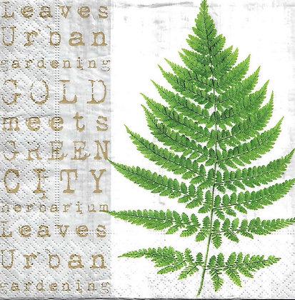 Gold meets green Código 7003