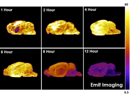 What is Cryo-Fluorescence Tomography?
