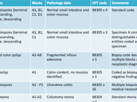 CPT Coding Basics for Histologists