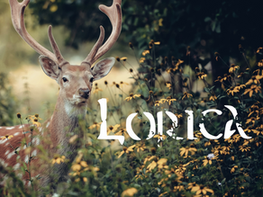 Lorica: Be Who You Are